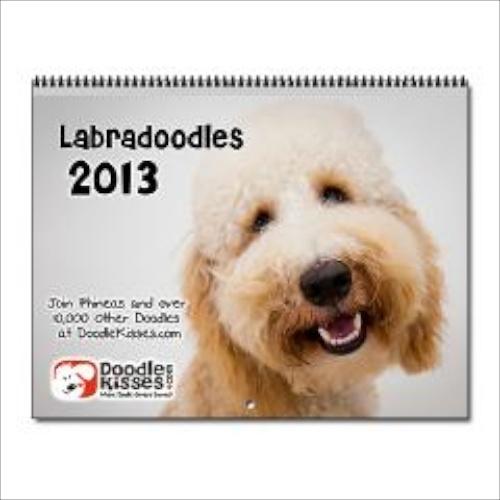 Labradoodles_wall_calendar_2013